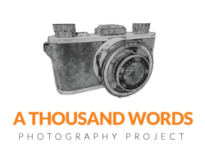 thousand-words-logo